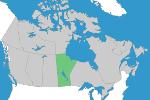 Piping – Manitoba