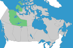 Northwest Territories Registration Requirements